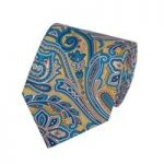 Men's Yellow & Blue Printed Paisley Tie – 100% Silk